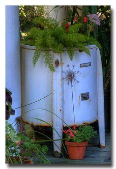 Another washing machine planter