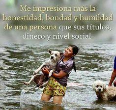 ... Me impresiona más la honestidad, bondad y humildad de una persona que sus títulos, dinero y nivel social.
