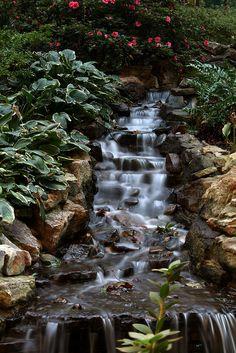 Oh my! Such a beautiful backyard cascade!