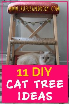 Is your cat climbing and destroying your furniture? These homemade cat condo ideas are easy to make - your cat will love them Cat Trees Diy Easy, Diy Cat Tree, Cat Empire, Cat Toilet Training, Cat Shelves, Mama Cat, Cat Climbing, Cat Carrier, Cat Condo