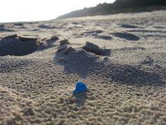 Festgehalten am Strand von Dzwirzyno Polnische Ostsee