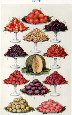 Fruits -  from Mrs Beeton's Book of Household Management (1861).