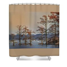 Cypress Shower Curtain featuring the photograph Cypress Trees by Scott Hervieux
