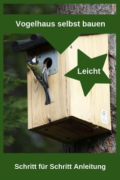 How to build a bird house yourself!-So baust du ein Vogelhaus selbst! See how you can easily build a bird feeder yourself! We have a step-by-step guide for you here - Woodworking Supplies, Woodworking Shop, Woodworking Crafts, Terrariums Diy, Garden Terrarium, Bf Gifts, Woodworking Magazine, Up Halloween, Gardening Supplies