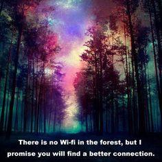 Magical Forest Canvas Print - Wallpaper World Galaxy Wallpaper, Cool Wallpaper, Wallpaper Backgrounds, Nature Wallpaper, Iphone Wallpaper, Phone Backgrounds, Worship Backgrounds, Magical Forest, Photo Manipulation