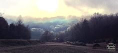 Winter stillness.   Photo by Emily Kepley Moss