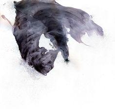Wind by Michael Cina, via Flickr