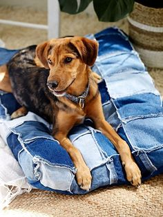 Patched Denim Dog Bed | Patched, multi-tonal denim dog bed. Super soft and comfortable for your pet! Machine Washable.    This item is only available to ship via UPS for delivery within the continental United States. Shipment to international locations, U.S. territories, Alaska, Hawaii, P.O. boxes, APO/FPO addresses and express ship methods are unavailable for this item.    *By All Paws Natural