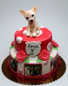 Welcome to London Cakes.Birthday Cakes and Cupcakes delivered all over London and Surrey Special Birthday Cakes, Birthday Cake Girls, Dog Birthday, Dog Cakes, Baby Cakes, Fondant, Fun Cupcakes, Cupcake Cakes, Meat Cake
