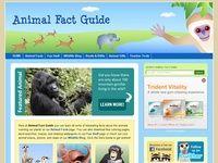 Animals, Dinosaurs, ZOO and Aquariums sites