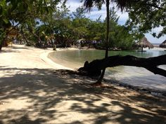 Roatan - Beach at little french key Little French Key, Roatan, Cruise, Beach, Scenery, The Beach, Cruises, Beaches