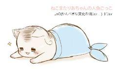 Italian Catfish~ Too cute! Hetalia Funny, Hetalia Fanart, Hetalia Anime, Aph Italy, Hetalia Axis Powers, Usuk, Kawaii Chibi, Neko, Cute Pictures