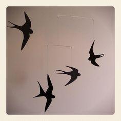 I love swallows....