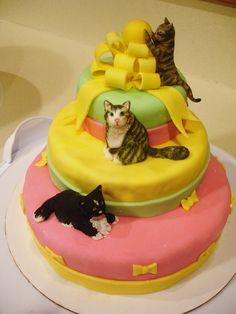 Cat Cake Cat birthday cake 1 Pasta Cenneti Pinterest