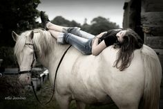 horse lounge - I want a horse photo shoot