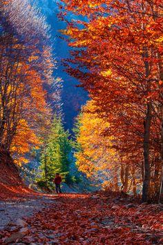 Photograph colourful by Mübin Çetin Dağhan