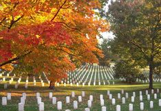"""Arlington National Cemetery. The """"Changing of the Guard"""" is so moving.  Everyone should experience it."""