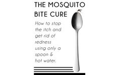 Run a spoon under hot water till hot place on bite for 60 seconds. May have to heat spoon again. Should stop itching Mosquito Bite Cure, Home Made Mosquito Repellent, Home Remedies, Natural Remedies, Camping Stuff, Cleaners Homemade, Homemade Beauty, Household Tips, Healthy Habits