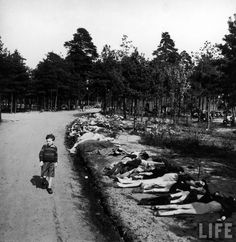 Young German boy walking down dirt road lined with corpses of hundreds of prisoners who died of starvation near. Bergen Belsen extermination camp,   April 20, 1945