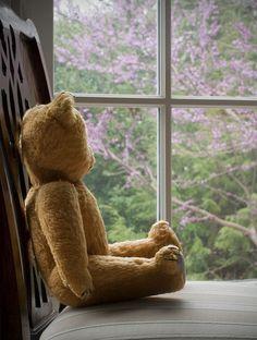 Rylee always waited at the window for Nana ❤️ Teddy Bear Hug, Bear Hugs, Baby Boy, Vintage Teddy Bears, Love Bear, Bear Doll, Mode Vintage, Softies, Childhood Memories