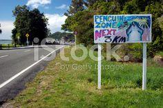 Penguin Zone Sign, Pohara Beach, Takaka, New Zealand royalty-free stock photo