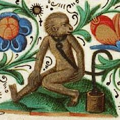 "Den Haag, Koniklijke Bibliotek, Ms. 135 K40, f. 14, 15th century. Courtesy of the ""Medieval Animal Data-Network"" website."