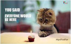 Oh No, Not Again On My #Birthday ! #Aprilfool #fun