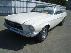 Large inventory of old Mustangs for sale - GT's, Fastbacks, Convertibles. 1967 Mustang, Ford Mustang Fastback, Project Cars For Sale, 1967 Shelby Gt500, Mustang For Sale, Custom Muscle Cars, Car Makes, Mustangs, Tea Length