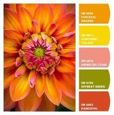 Paint colors from ColorSnap by Sherwin-Williams Color Schemes Colour Palettes, Colour Pallette, Colour Combo, Color Trends, Color Combinations, Colours That Go Together, Design Seeds, Paint Colors For Home, World Of Color
