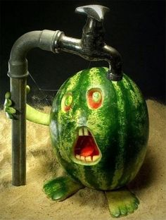 funny fruit food art creative images pictures lol photos 9 Funny Fruit Art You Should Try At Home Photos) L'art Du Fruit, Deco Fruit, Fruit Art, Fruit Food, Fruit Plate, Fresh Fruit, Food Food, Watermelon Art, Watermelon Carving