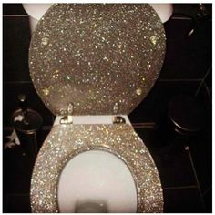 gold foil toilet seat.  Gold Foil Standard Toilet Seat And Future