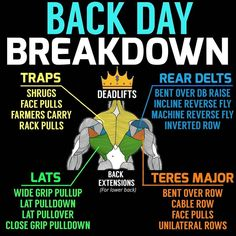 First off lets start off with a lot of these exercises are going to overlap since there's a few exercise that basically hit the whole entire back, one being the deadlift which is KING since it almost hits the entire body. So what I have here is the major muscle groups of your back and if you want a well developed back, you're going to have to hit all the angles (i.e. vertical, horizontal, etc.)