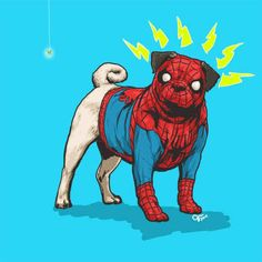 """What's even better than a Marvel superhero? A dog superhero. In """"DOTMU: Dogs of the Marvel Universe"""", illustrator Josh Lynch takes different pups and reimagines Ms Marvel, Marvel Heroes, Marvel Characters, Spiderman Marvel, Book Characters, Marvel Comics, Avengers, Amor Pug, Spider Dog"""