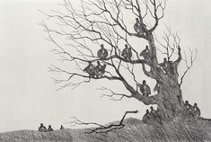 "Paul Flora ""Dreizehn Unglücksraben am Baum"" Radierung 43 x 50 cm Art And Illustration, Illustrations, Paul Flora, Rabe, Postmodernism, Tree Art, Cool Drawings, Art History, Modern Contemporary"