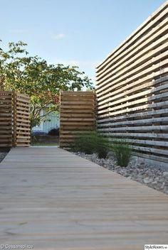 trädgård,trädgårdsgång,altan,terass,uteplats,trädgårdsgrind,prydnadsgräs,strandiris,japanskt körsbärsträd,trägång