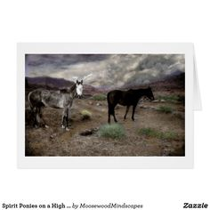 Spirit Ponies on a High Country Plateau Card