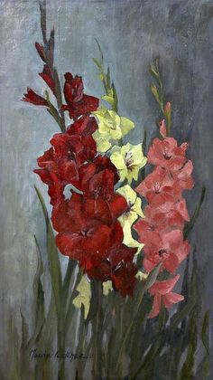 Mollie Fletcher - Gladioli