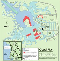 50 Best Crystal River Florida images