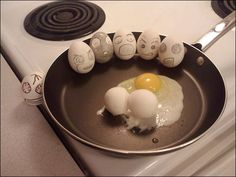 Creative And Humorous Egg Photography
