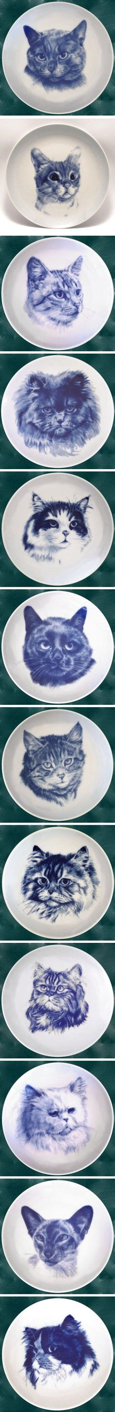 Cat plates: British Blue; Burmese; European Shortair - Silver Tabby; Persian Blue; Norwegian Forest Cat; European Shorthair; Manx; Persian Silver Tabby; Tabby Longhair; Persian White; Siamese Blue Point; Persian Tricolour http://dogplate.com/index.php?route=product/category&path=2