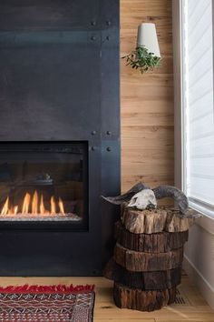 B95 - Picture gallery #fireplaces