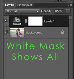 understanding layer masks in photoshop elements and photo shop  beginner