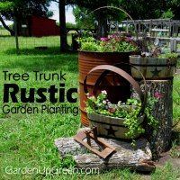 my rustic yard decor with painted step ladder garden and outdoor decor pinterest yards gardens and yard ideas - Rustic Garden 2015