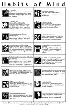 Habits of Mind.  Free posters. would be great 'silent teachers'
