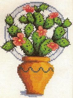 Gallery.ru / Photo # 5 - Cactus - lelik-spb