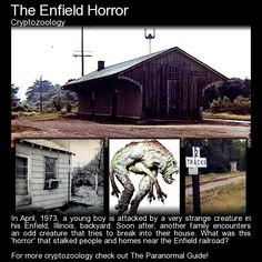The Enfield Horror. A series of strange sightings in 1793 saw the residents of Enfield, Illinois, stalked by a strange 'thing'. Read more here: http://www.theparanormalguide.com/blog/the-enfield-horror