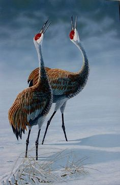 pair of sandhill cranes courting in the snow - Painting Art by ...