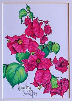 Art Print Bougainvillea Flower Watercolor Pen by LaurieGrayStudio