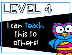 Levels of Understanding- Owl Themed Posters and Rubrics