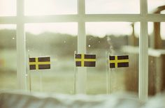 Proud to be Swedish. My strong heritage.